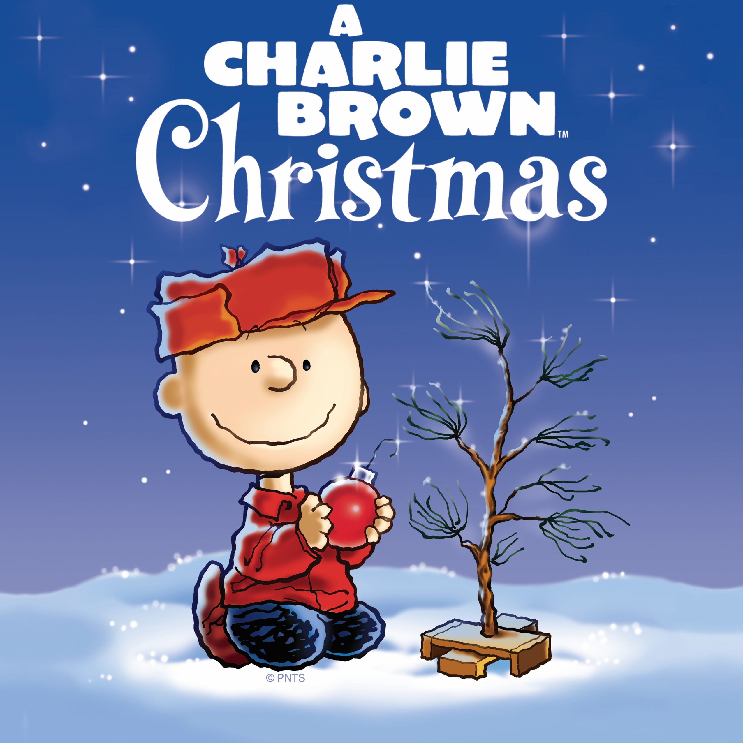 Charlie Brown Christmas Images.A Charlie Brown Christmas Presented By Henrico Theatre Company