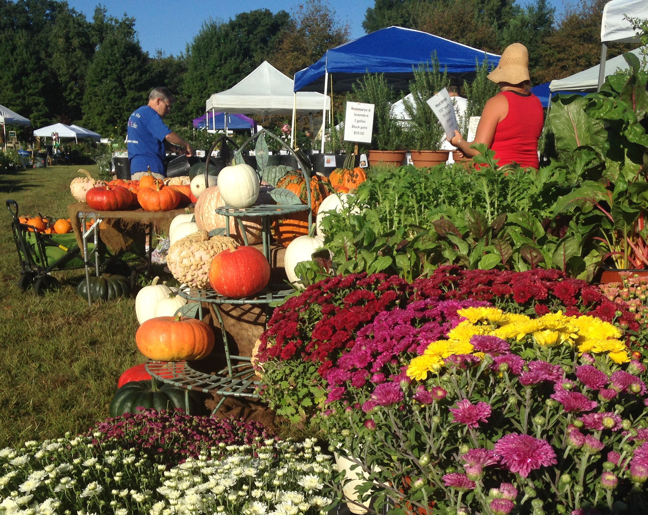 Lewis Ginter Fall PlantFest