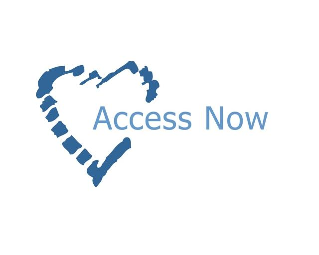 Organization logo of Access Now, Inc.